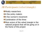 3b participants velvet triangle