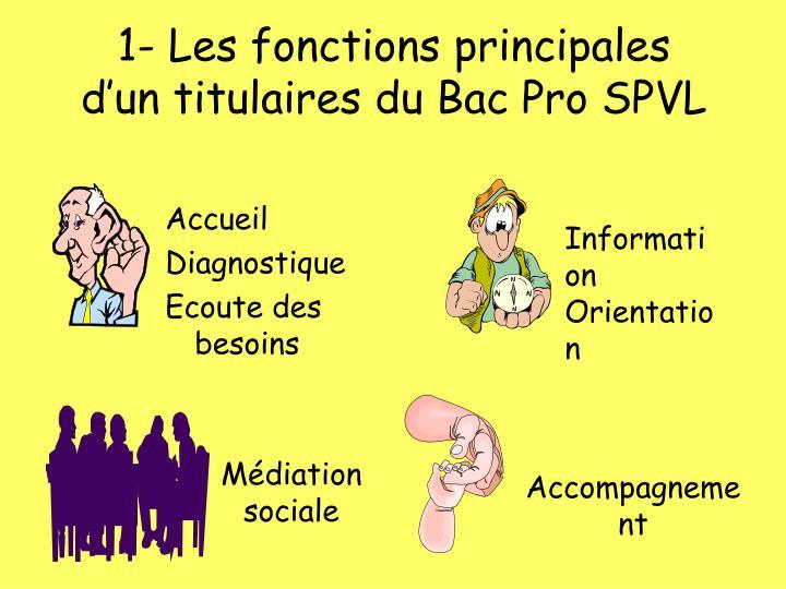 1 les fonctions principales d un titulaires du bac pro spvl