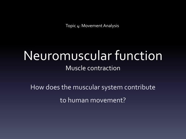 neuromuscular function muscle contraction n.