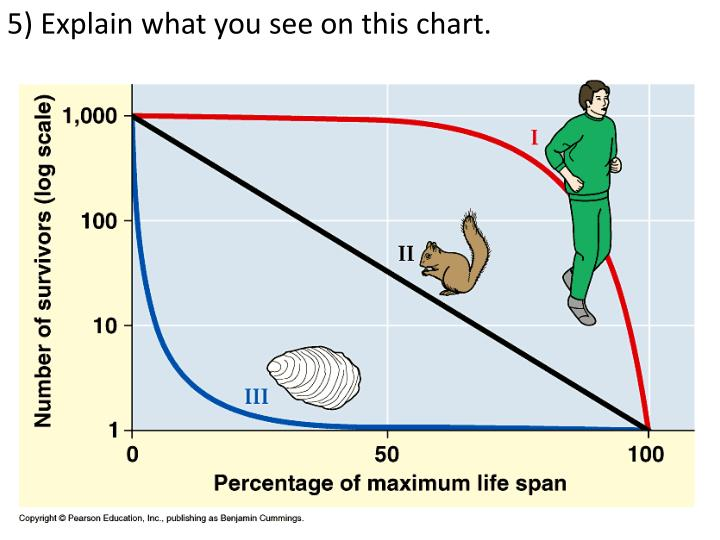 5) Explain what you see on this chart.