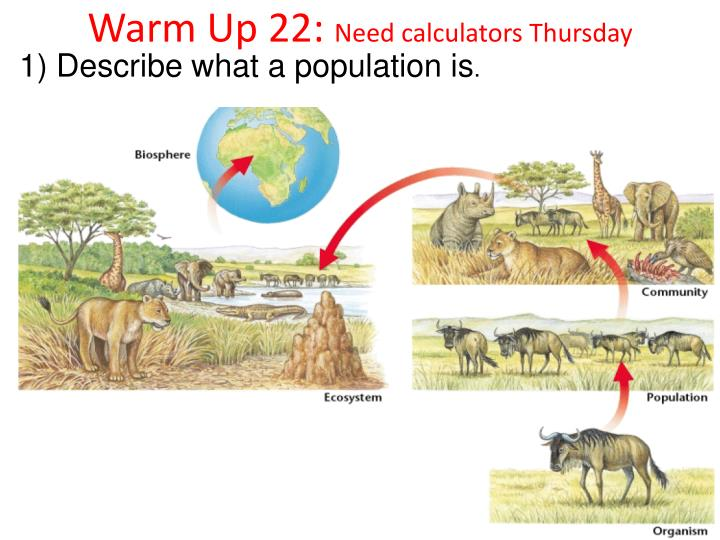Warm Up 22:
