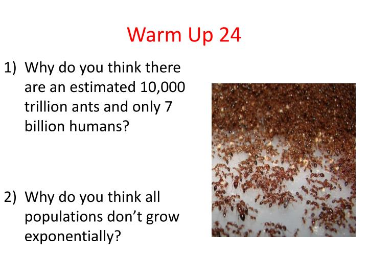 Warm Up 24