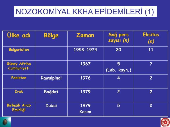 NOZOKOMİYAL KKHA EPİDEMİLERİ (1)