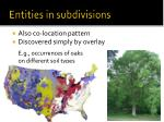 entities in subdivisions