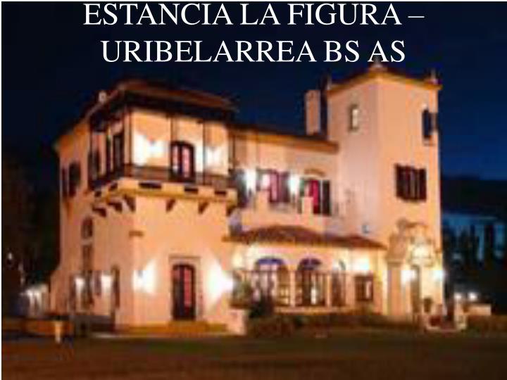 ESTANCIA LA FIGURA – URIBELARREA BS AS