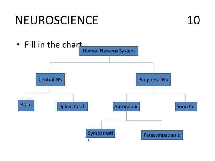 NEUROSCIENCE10