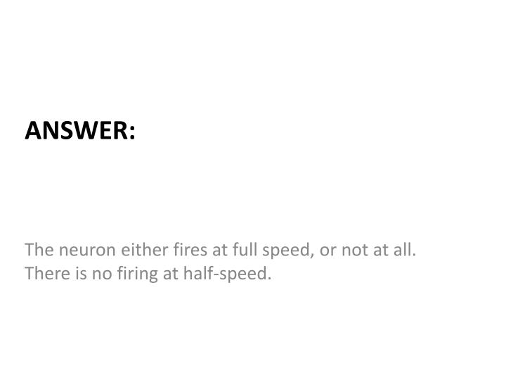 The neuron either fires at full speed, or not at all. There is no firing at half-speed.