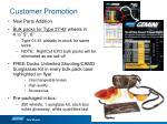 customer promotion