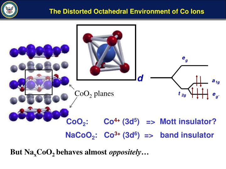 The Distorted Octahedral Environment of Co Ions