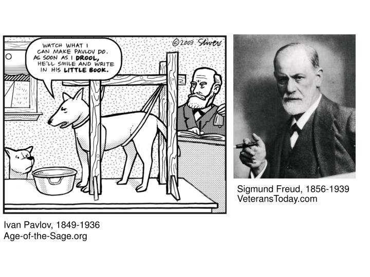 compare and contrast ivan pavlov and sigmund freud Dix, sigmund freud, g stanley hall, william james, ivan pavlov, jean piaget  1 compare and contrast various cognitive processes:.