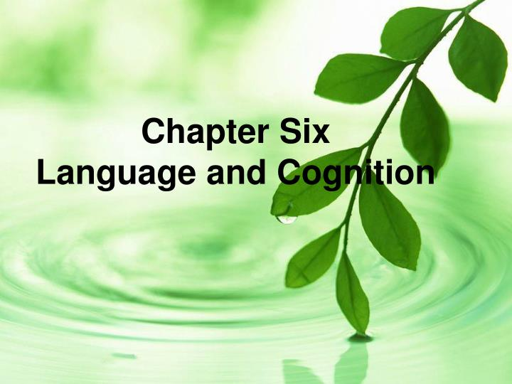 chapter six language and cognition n.