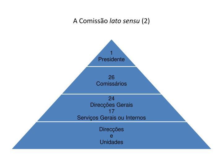 A comiss o lato sensu 2