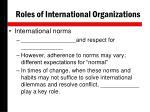 roles of international organizations1