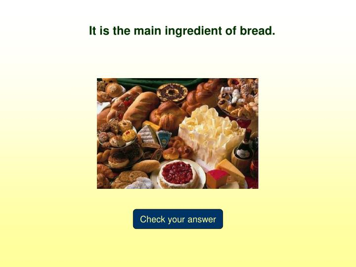 It is the main ingredient of bread.