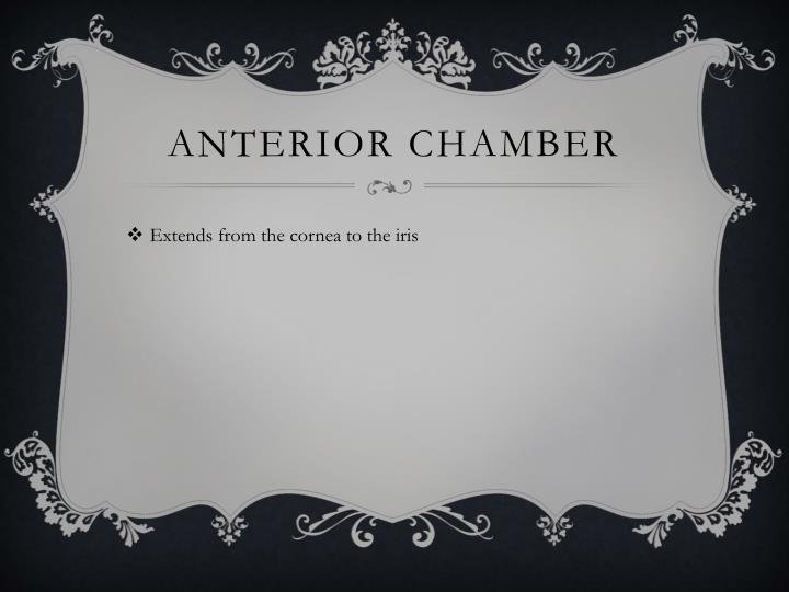 Anterior chamber