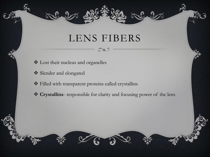 Lens fibers