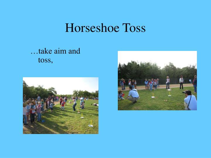 Horseshoe Toss