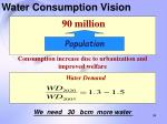 water consumption vision
