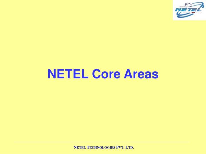 NETEL Core Areas