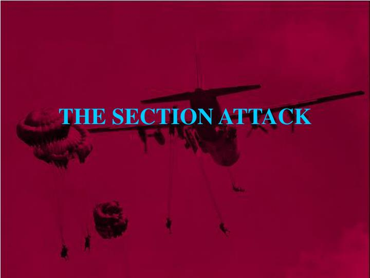 the section attack n.