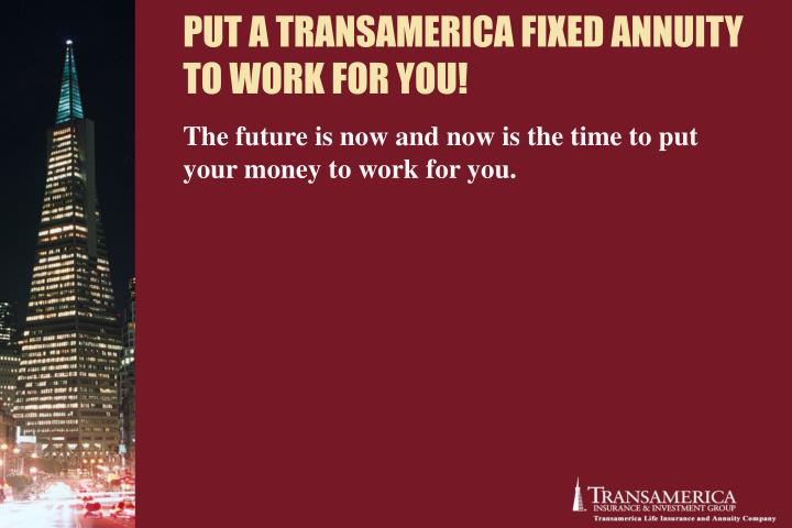 PUT A TRANSAMERICA FIXED ANNUITY