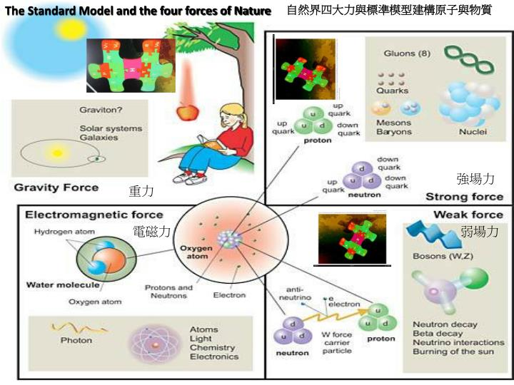 The Standard Model and the four forces of Nature