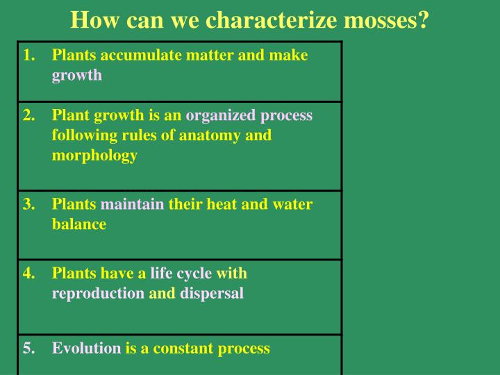 How can we characterize mosses?