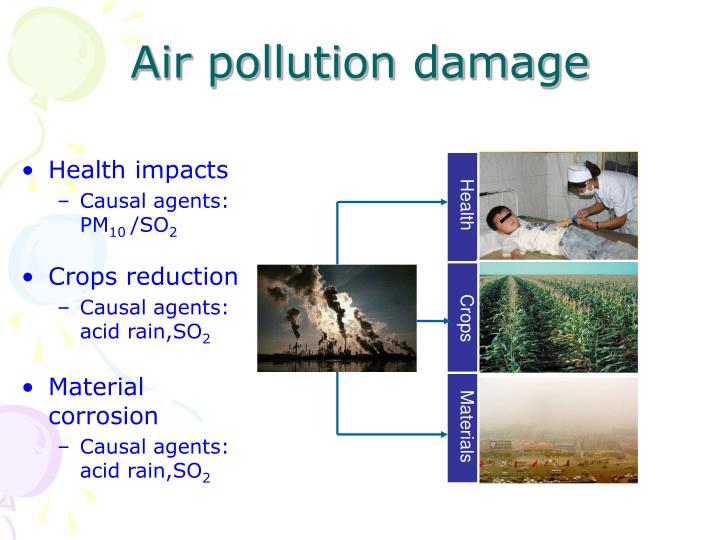 Air pollution damage