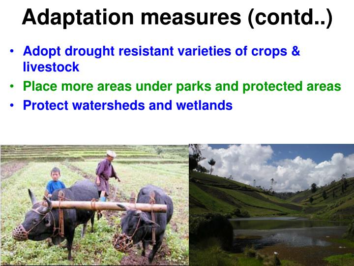 Adaptation measures (contd..)