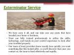 exterminator service