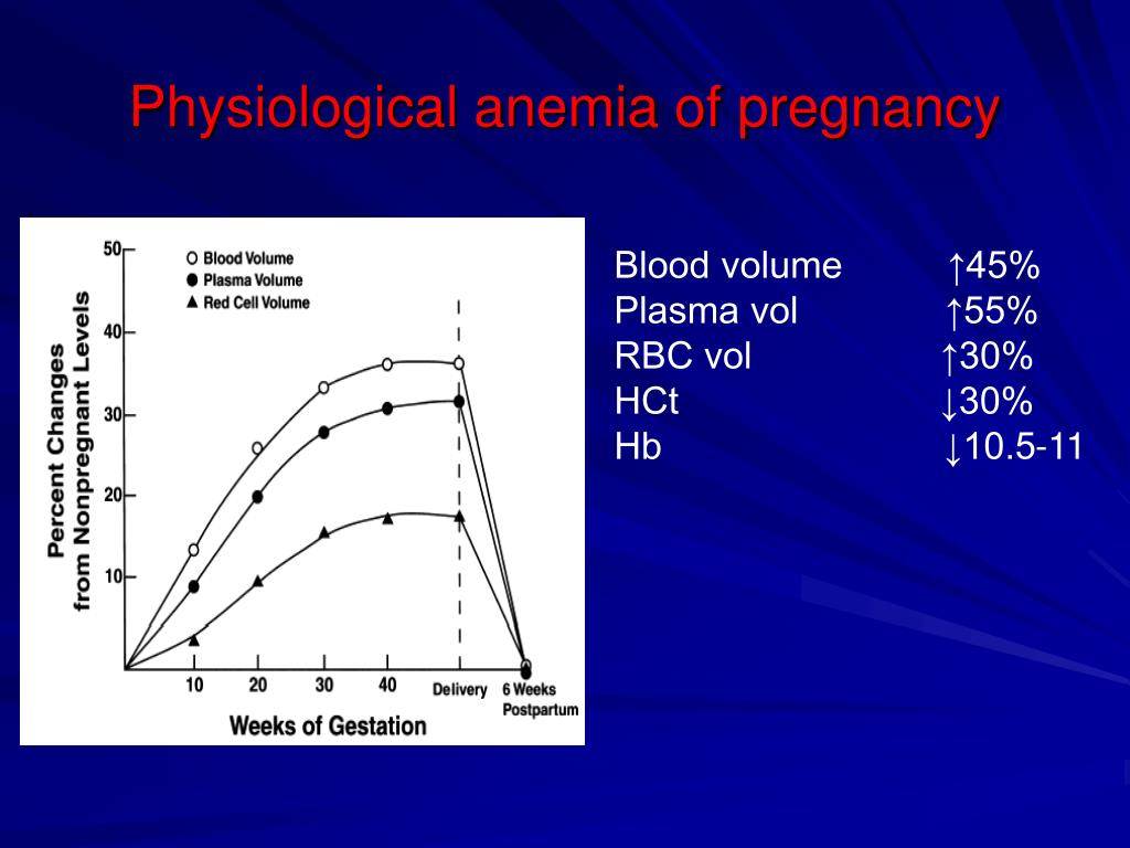 My Friends Told Me About You / Guide define physiological anemia in