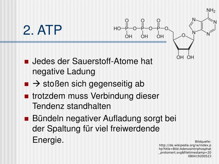 2. ATP