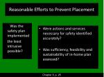 reasonable efforts to prevent placement
