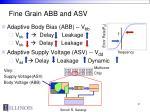 fine grain abb and asv