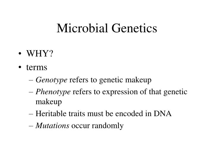 Microbial genetics - [PPT Powerpoint]