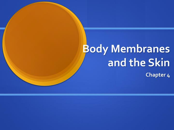 body membranes and the skin n.