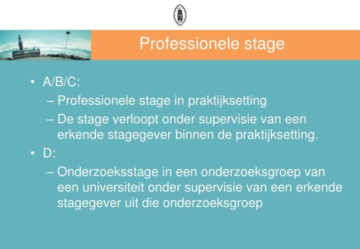 Professionele stage