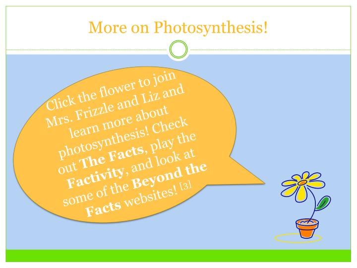 More on Photosynthesis!