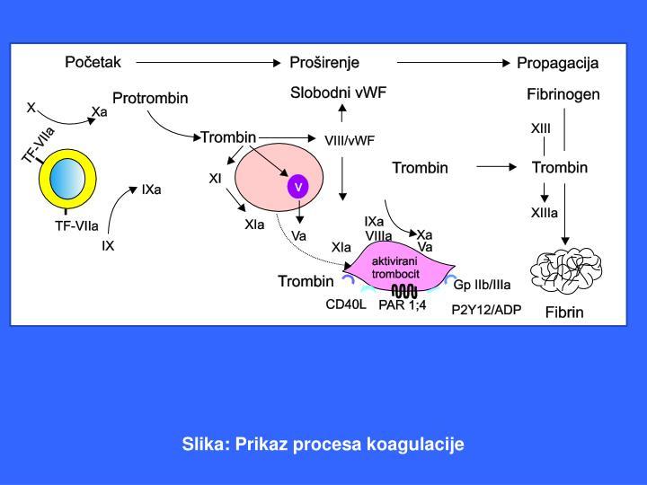 Slika: Prikaz procesa koagulacije