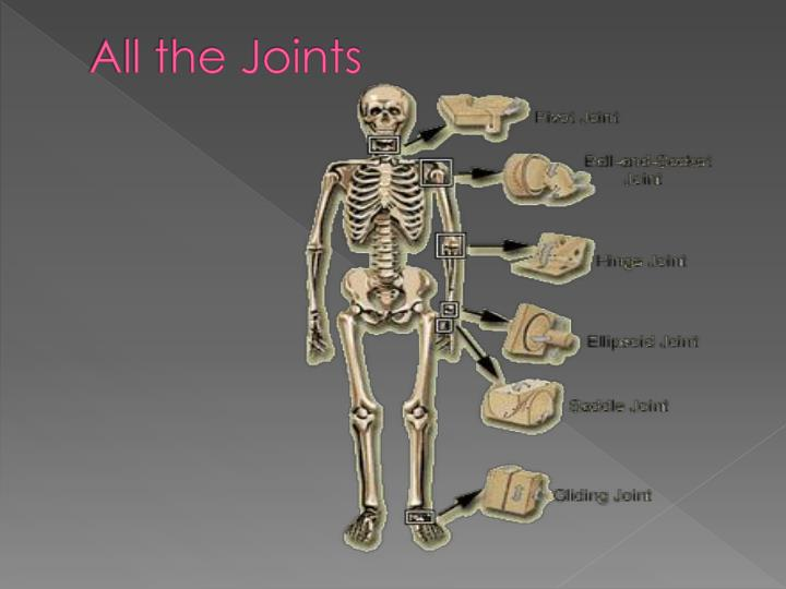 All the Joints
