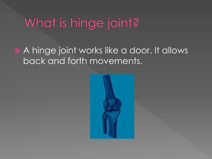 What is hinge joint?