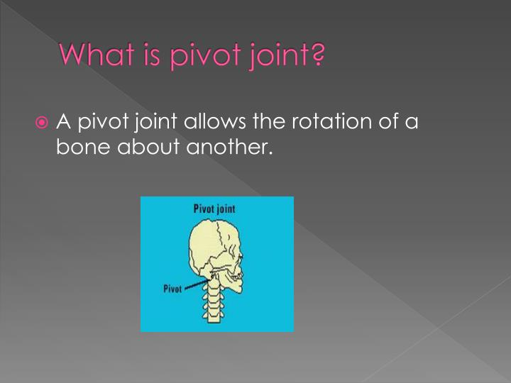 What is pivot joint?