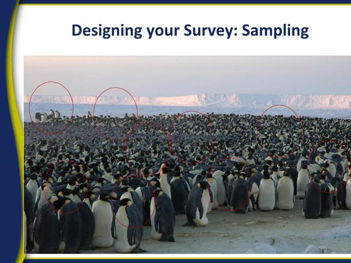 Designing your Survey: Sampling