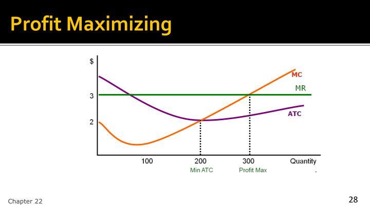 Profit Maximizing