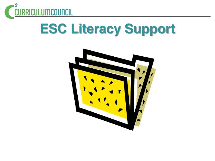 ESC Literacy Support