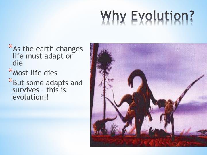 Why Evolution?