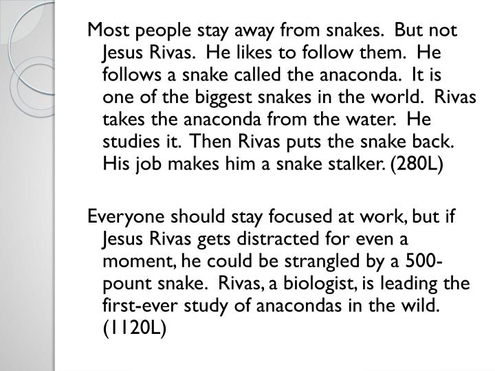 Most people stay away from snakes.  But not Jesus Rivas.  He likes to follow them.  He follows a snake called the anaconda.  It is one of the biggest snakes in the world.  Rivas takes the anaconda from the water.  He studies it.  Then Rivas puts the snake back.  His job makes him a snake stalker. (280L)