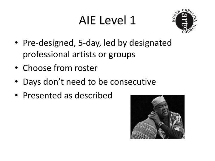 AIE Level 1