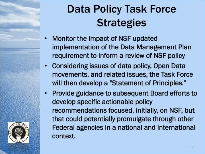 Data Policy Task Force Strategies