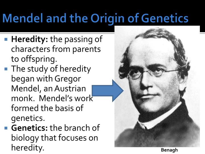 Mendel and the Origin of Genetics